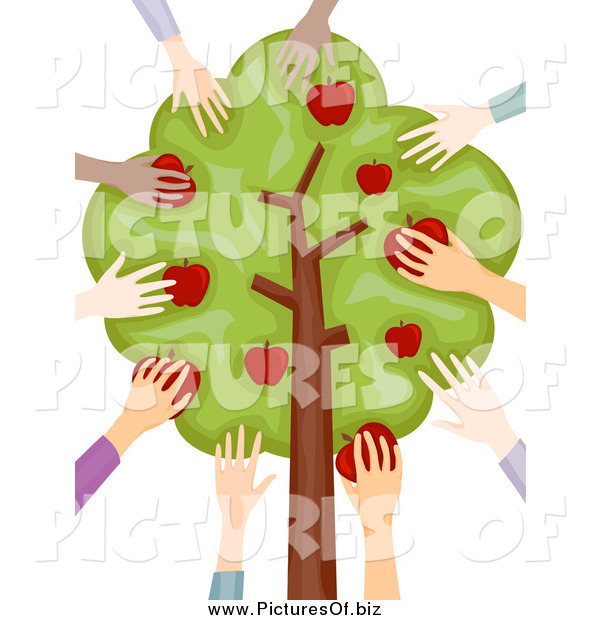 Vector Clipart of Diverse Hands Picking Apples